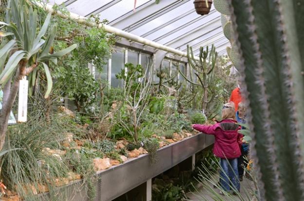 BotanischerGartenErlangen21